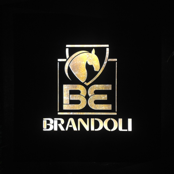 logo_brandoli_gfa
